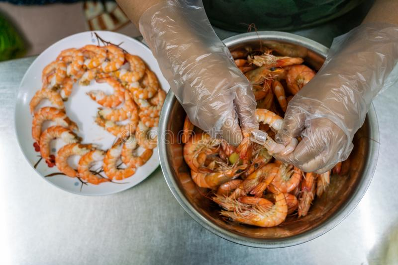 Wearing disposable plastic gloves and peeling shrimps by hand stock photography