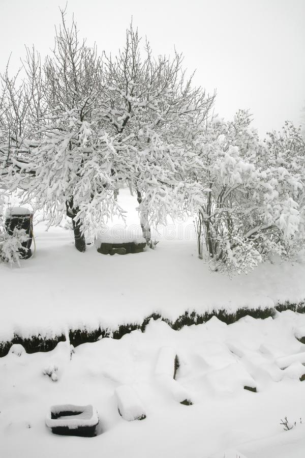 Weather anomaly. Snow in May. Garden covered with snow after snowstorm. Europe. Gloomy day stock photography