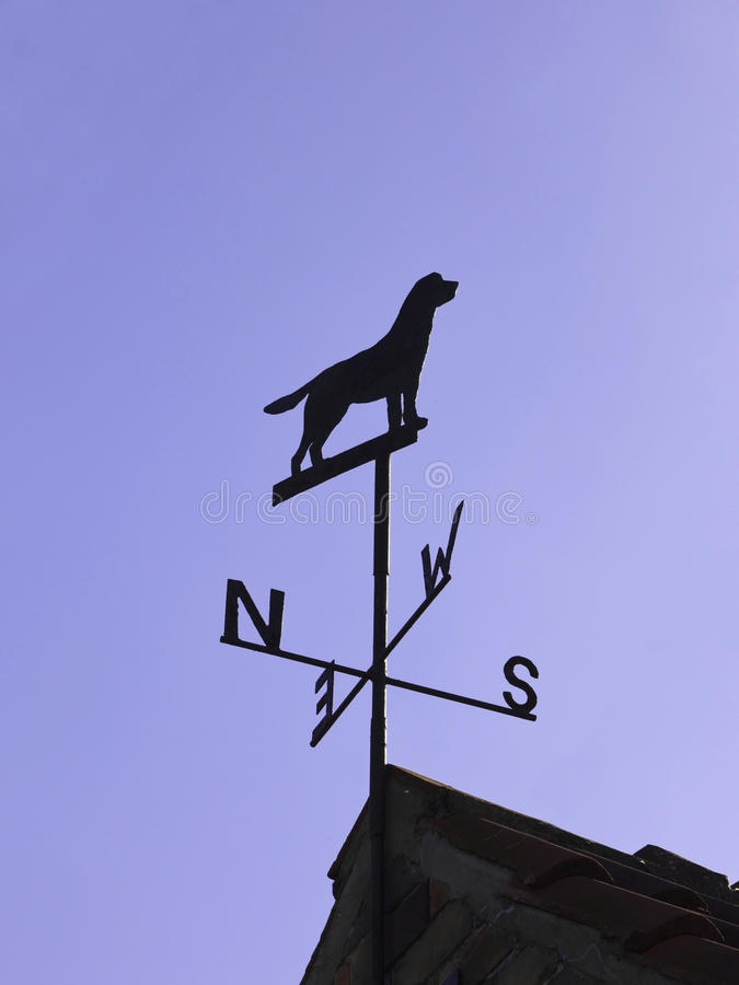 Weather vane. A weather vane in the shape of a dog under a blue sky royalty free stock photography