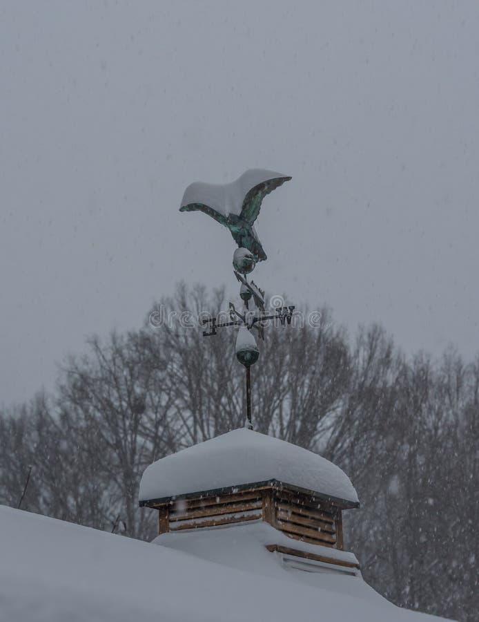 Download Weather vane stock photo. Image of deep, predicted, weather - 83710618