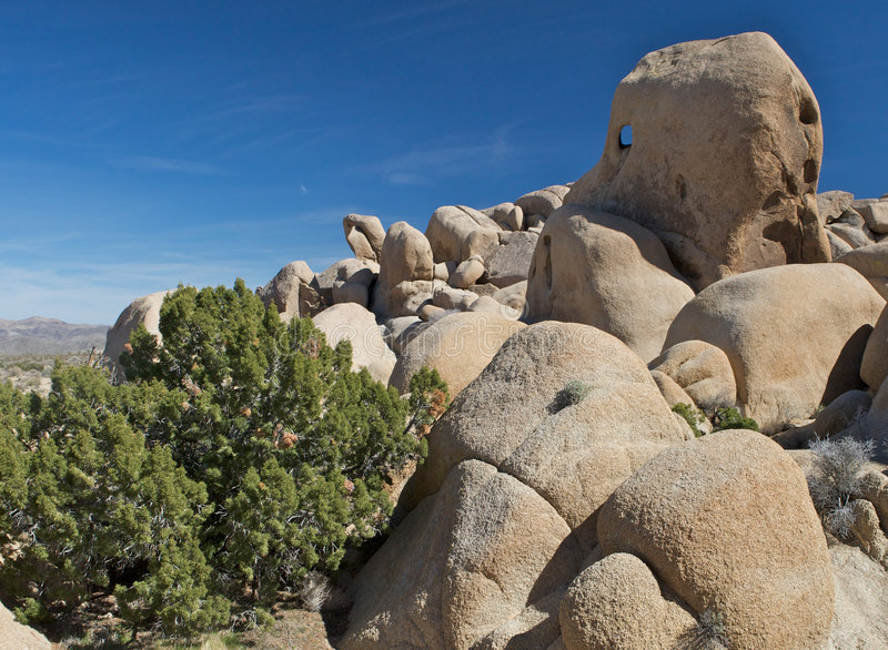 Weatherbeaten desert rocks. A view of weatherbeaten rocks, worn smooth by longtime erosion in the Joshua Tree National Park, California royalty free stock images