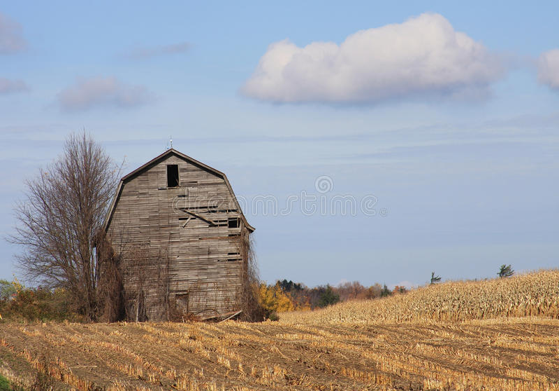 Download Weathered Barn Stock Image - Image: 11514851
