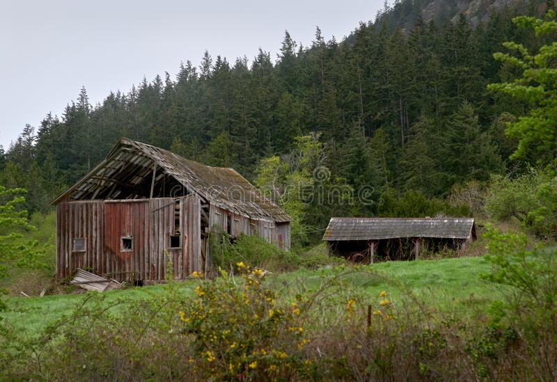 Pacific Northwest Barn Ruin. A weathered barn collapsing in the Pacific Northwest. United States stock photos