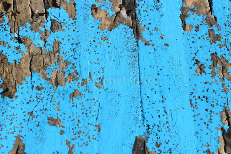 Weathered blue painted wood. royalty free stock photo