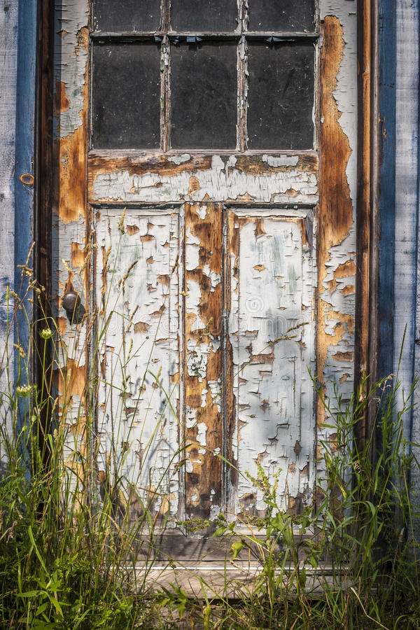 Weathered door-2. Outside shot of weathered, windowed door with paint peeling off and tall grass growing royalty free stock photography