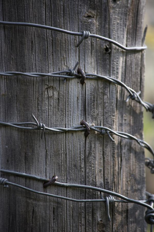 weathered-gray-wooden-fence-barbed-wire-