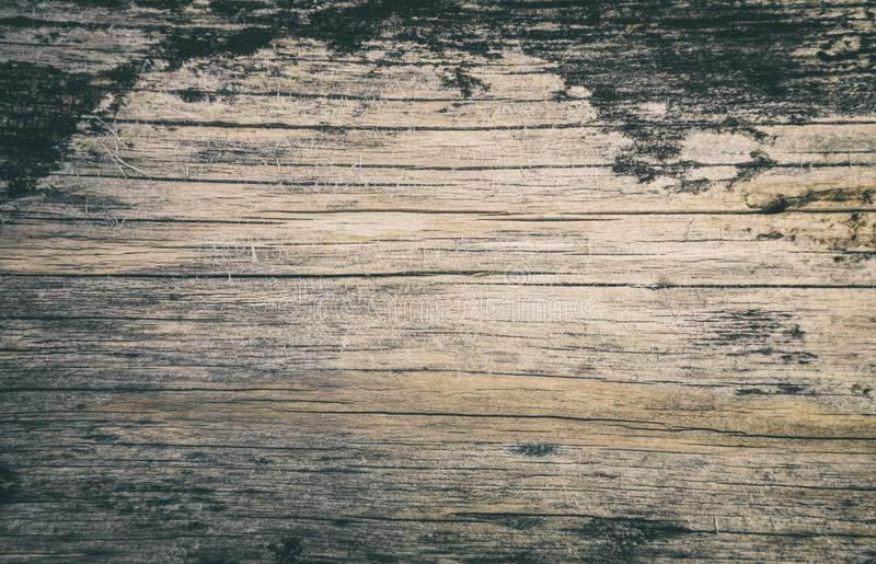 Weathered Log Grungy Background royalty free stock photos