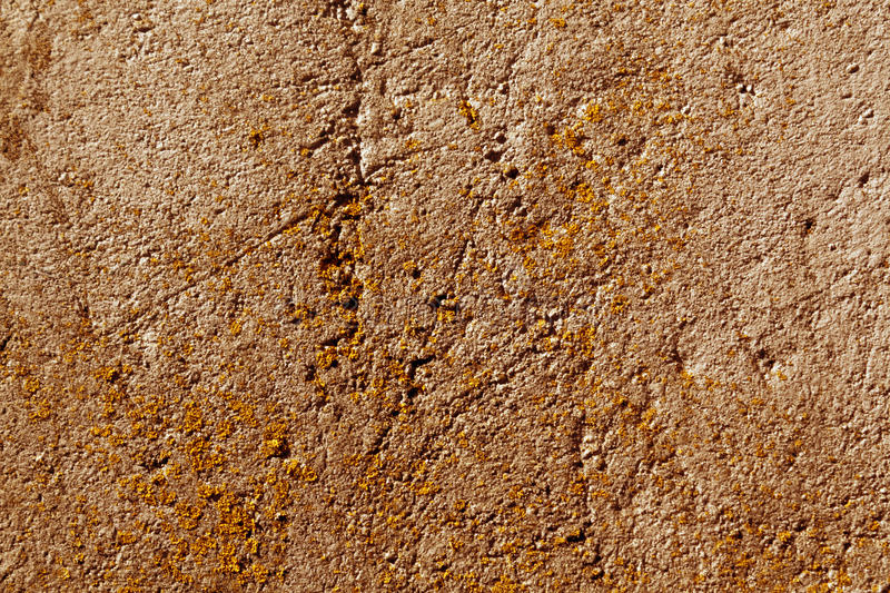 Weathered orange cement wall with moss. Abstract backgroubd and texture royalty free stock photos