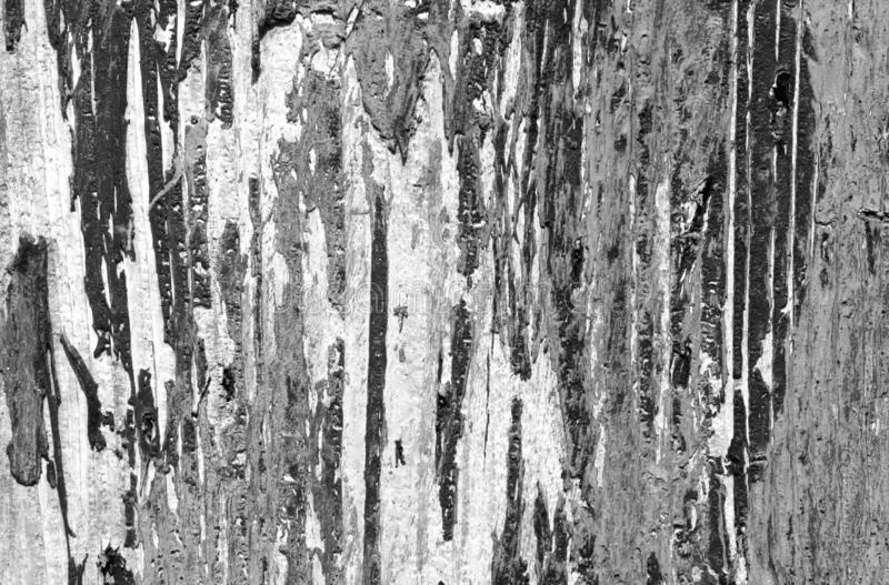 Weathered painted wooden wall in black and white. Abstract background and texture for design, grey, gray, old, plank, vintage, board, pattern, rough, shabby royalty free stock images