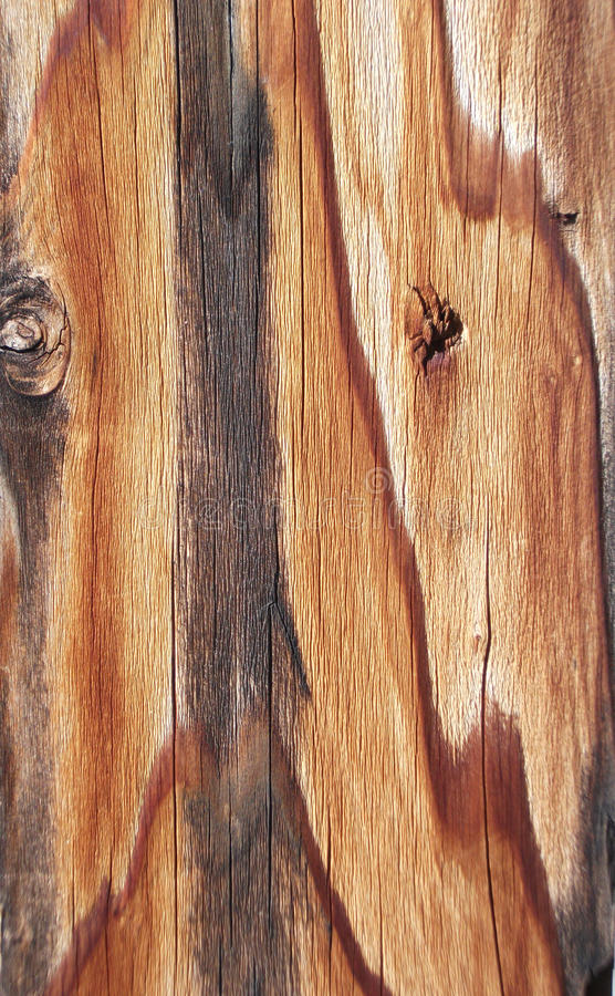 Download Weathered Plank Royalty Free Stock Image - Image: 18461926