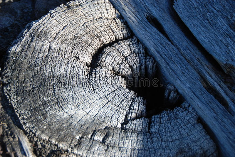 Weathered post royalty free stock images