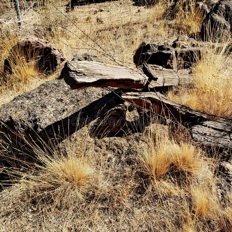 Weathered posts on the ground. Old weathered and worn fence posts tangled up in barbed wire laying on the ground in rocks attest to the ranching heritage in stock photography