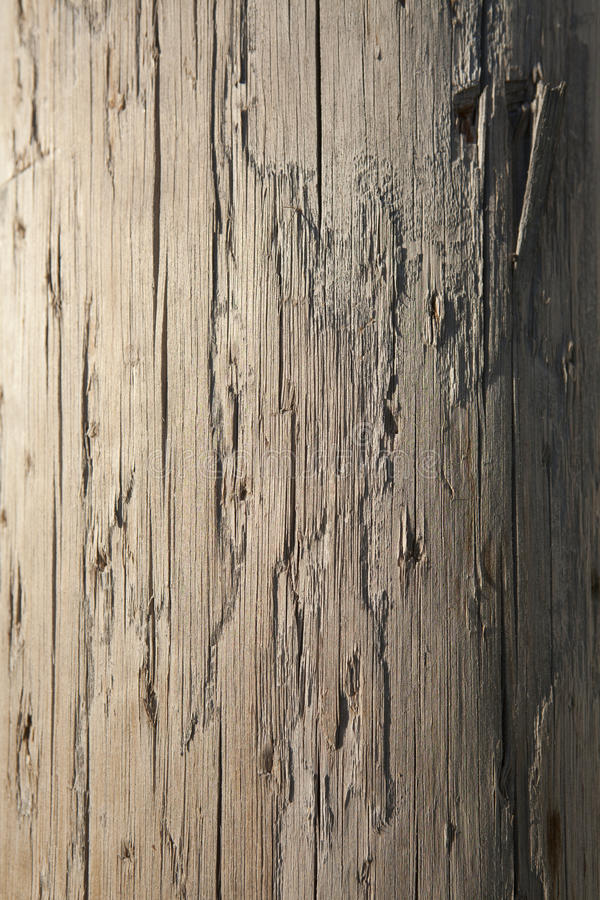 Weathered Telephone Pole. Closeup of the weathered surface on a wooden telephone pole. Vertical shot royalty free stock photos