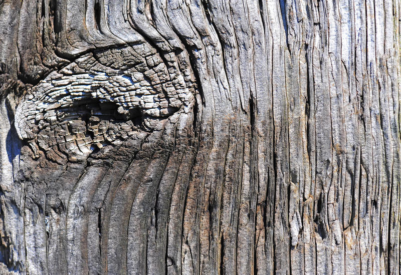 Weathered wood fence post knot stock photos