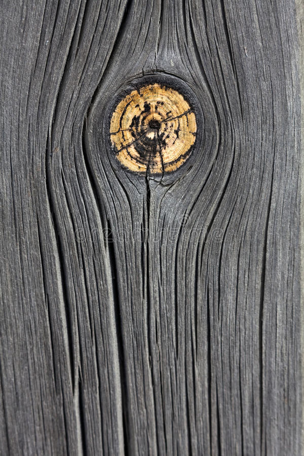 Weathered Wood With Knot Stock Photography
