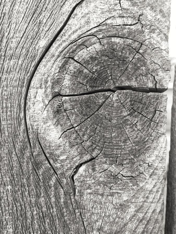 Weathered Wood royalty free stock images