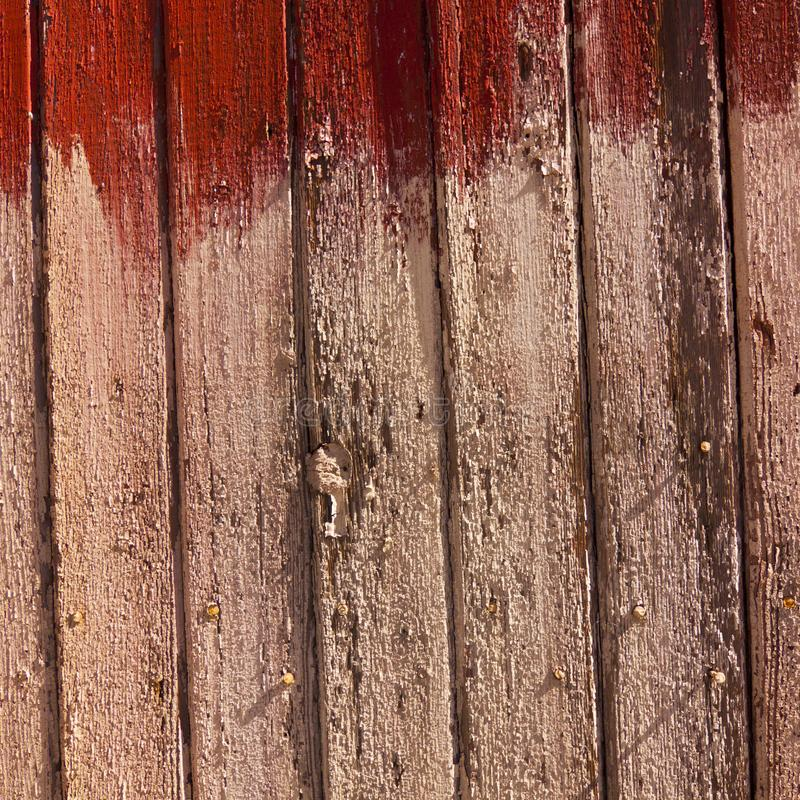 Weathered Wood Texture royalty free stock image