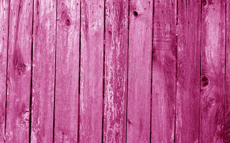 Weathered wooden fence in pink color. Abstract background and texture for design, vintage, old, timber, wall, tree, carpentry, natural, painted, materials royalty free stock image