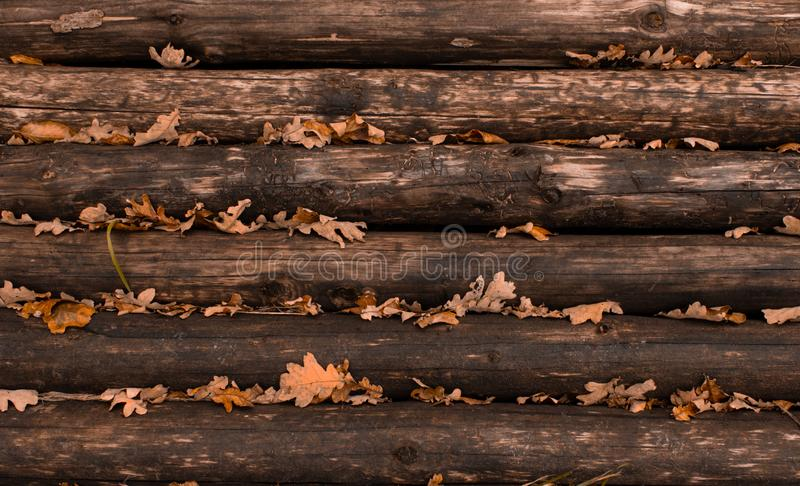 Weathered wooden logs with natural pattern grunge background royalty free stock photos