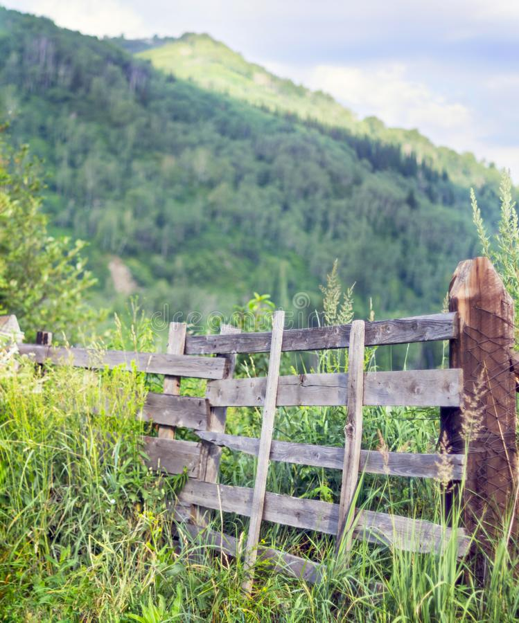 Weathered Wooden Split-Rail Fence with Supports in Tall Grass with Mountains, Blue Sky and White Clouds in Background in Early royalty free stock photography