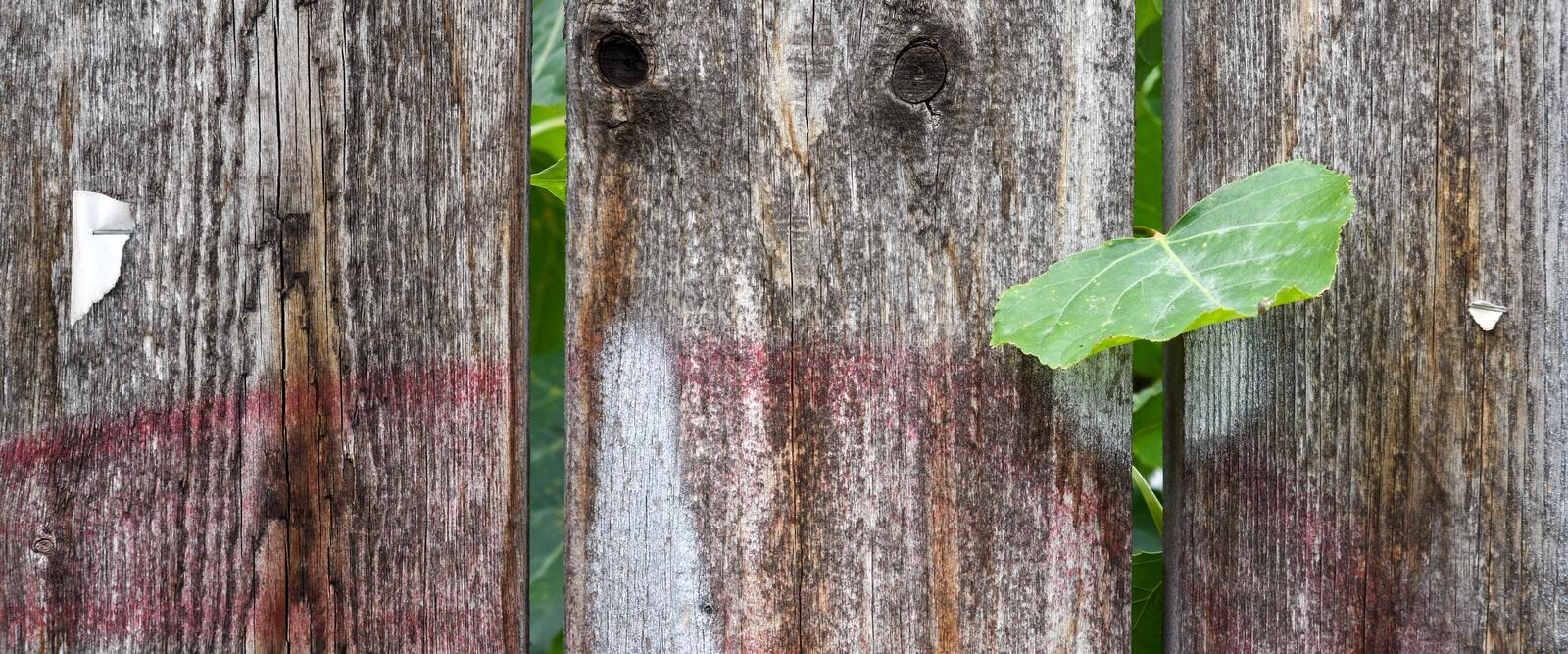 Weathered wooden texture for interior or exterior design solutions. Weathered wooden wall texture for industrial interior or exterior design solutions stock photos