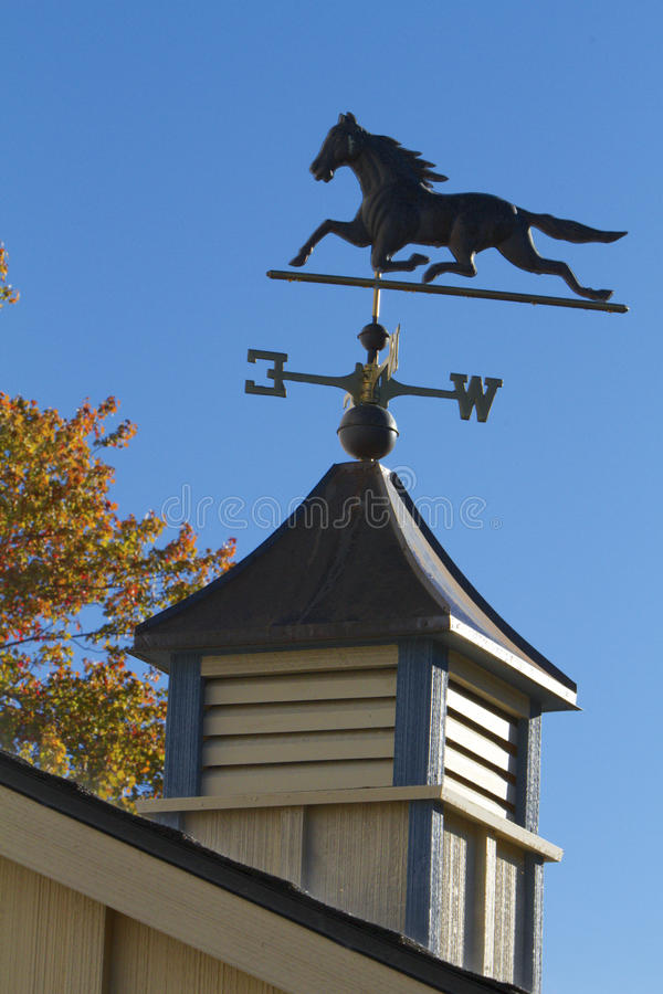 Weathervane de cheval image stock