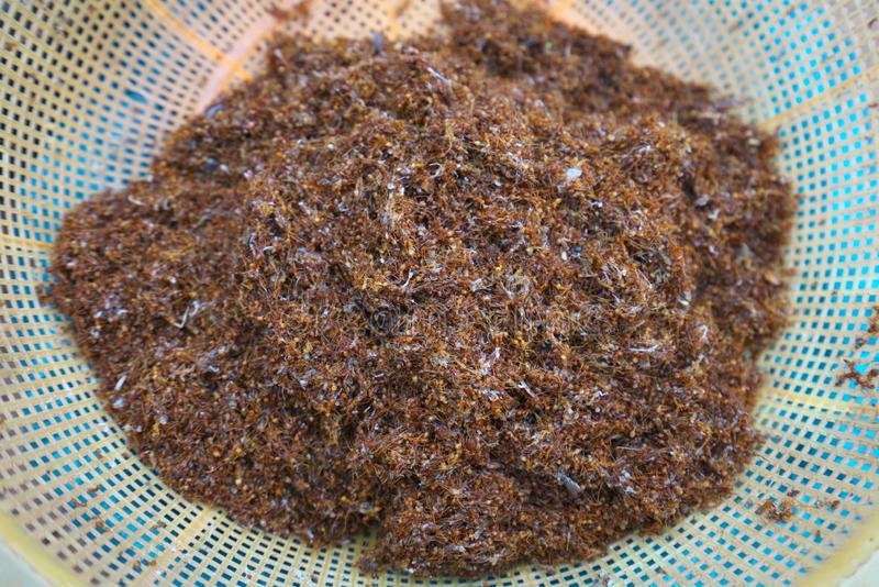 Weaver ants or tailor ants or Oecophylla smaragdina sold at Preah Vihear Market in Cambodi stock photo