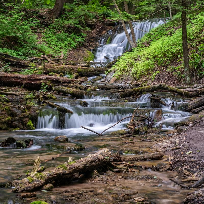 Weavers Creek Falls with logs and rocks royalty free stock photos