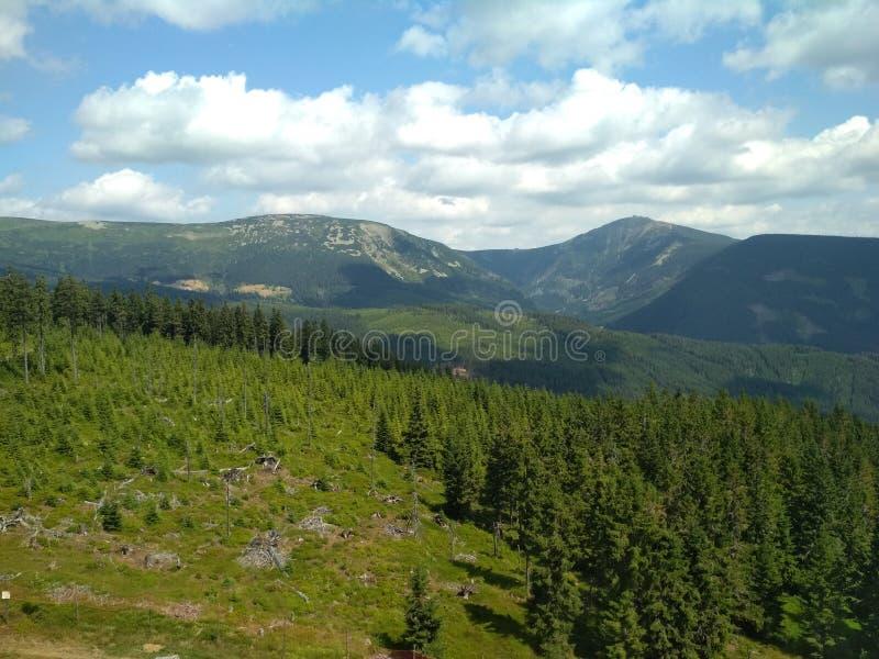 Weavy horizont. Mountain royalty free stock photo