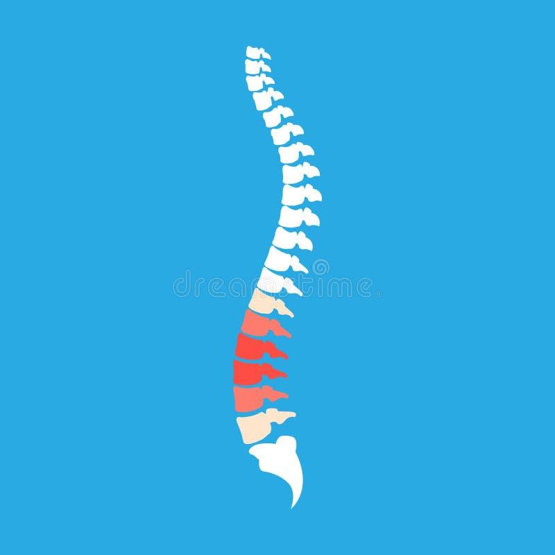 Symbolic image of red pain in intervertebral discs of spine. Illustration vector illustration