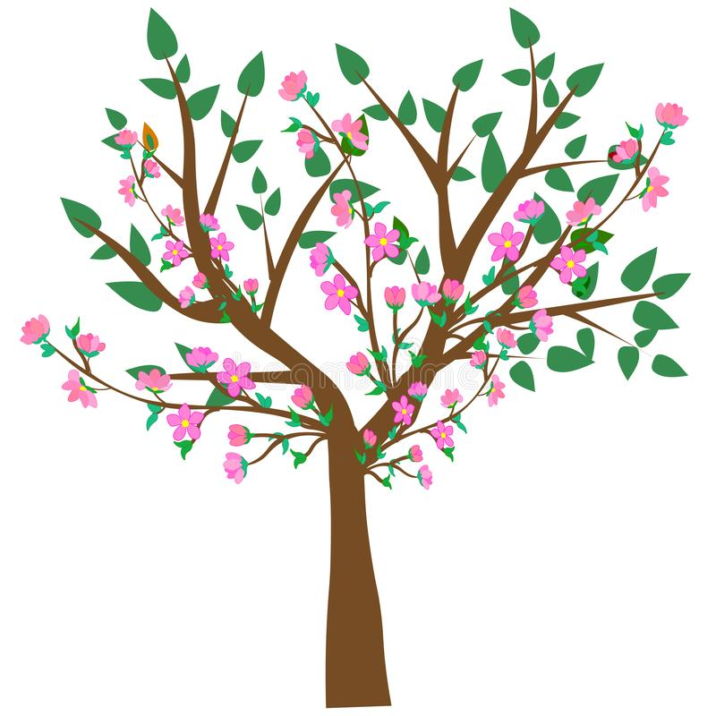 Web. Vector illustration of an abstract blossoming cherry tree against white background royalty free illustration