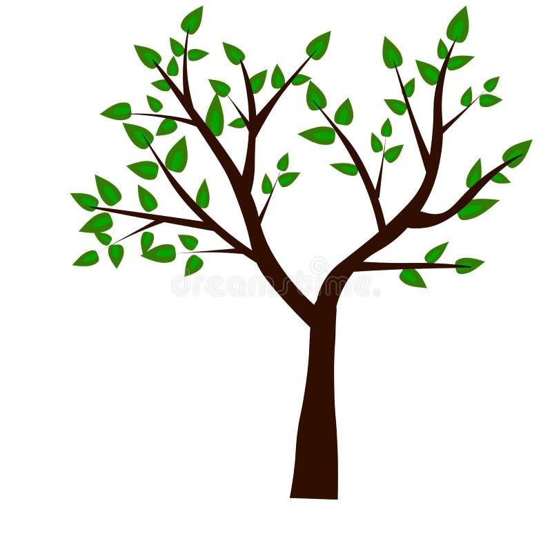 Web. Spring tree green on grunge background for your design vector illustration
