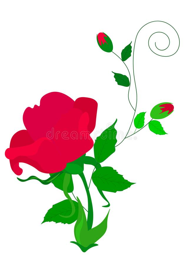 Red rose cut out of paper. Floral background. Vector vector illustration
