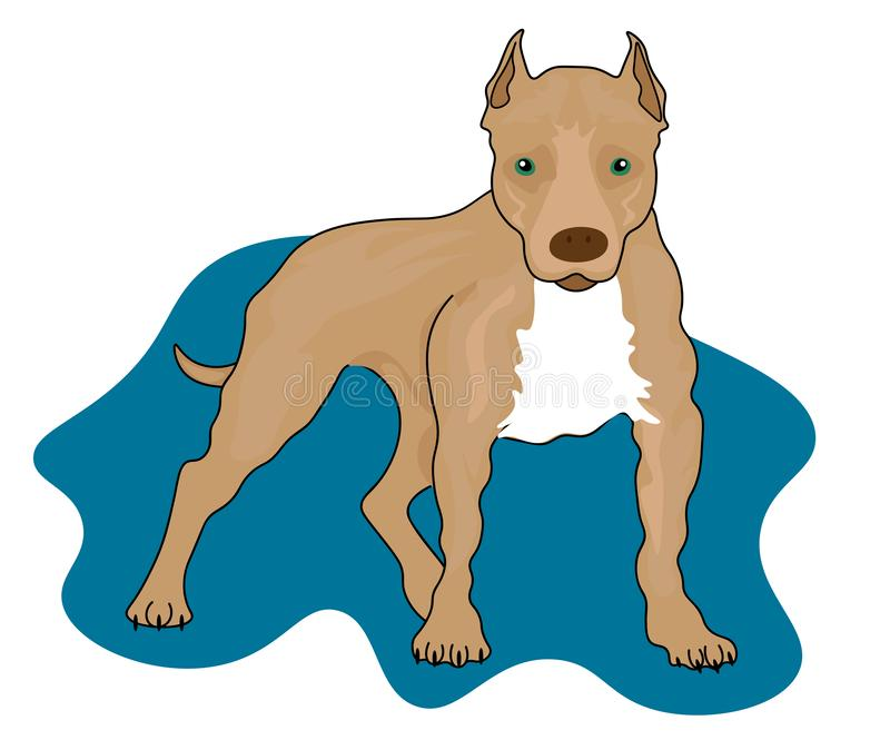 Web Boxer dog - isolated outlined  vector illustration