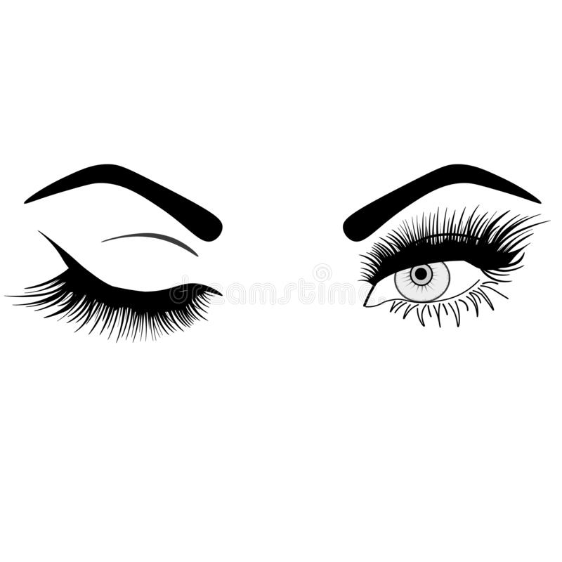 Web woman`s sexy luxurious eye with perfectly shaped eyebrows and full lashes. Idea for business visit card, typography . Pe royalty free illustration