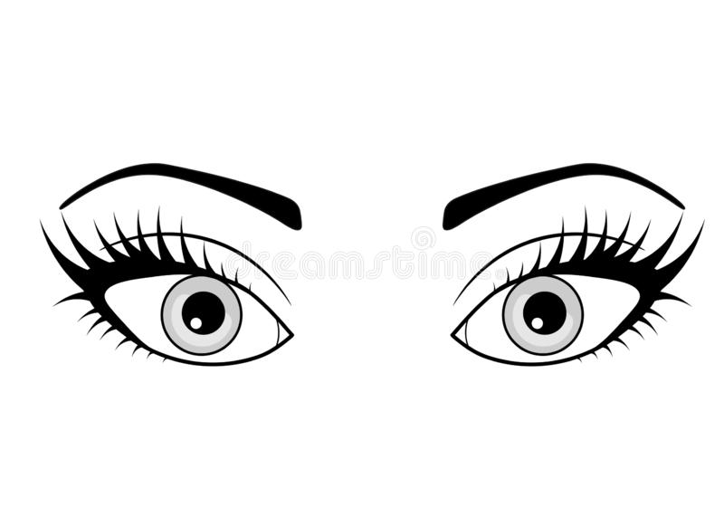 Web Beautiful woman eye. Vector illustration. Ink drawing. Black and white. stock illustration