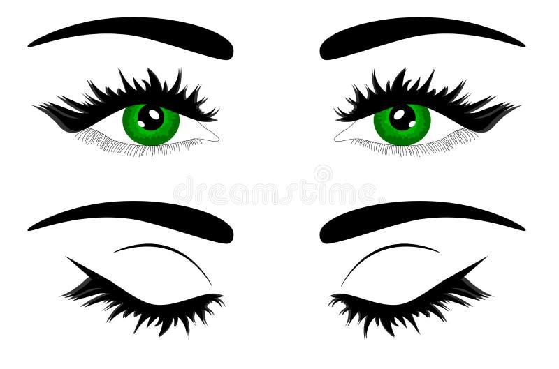 Web Vector illustration beautiful female green eye royalty free illustration