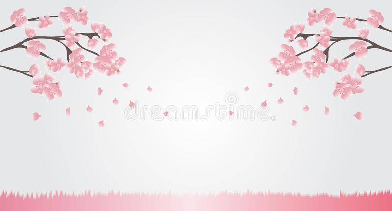Natural background Pink cherry blossoms are blooming and blown away with the background breeze for text or display various adverti stock illustration