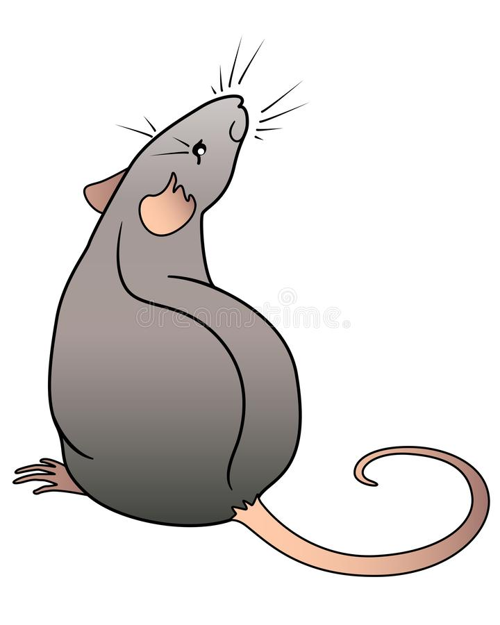 Rat is the symbol of the Chinese horoscope. Rat sits rear view. Mouse - rodent pet color vector picture. vector illustration