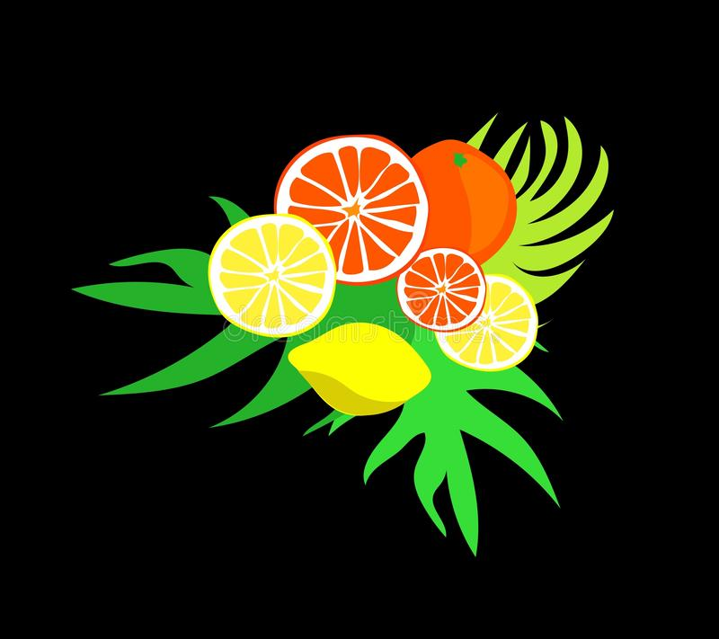Fruit composition of oranges and lemons in the green leaves. Vector illustration stock illustration