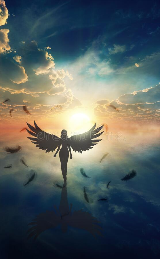 Beautiful girl with angel wings walking on water at sunset, shadow work royalty free stock photo