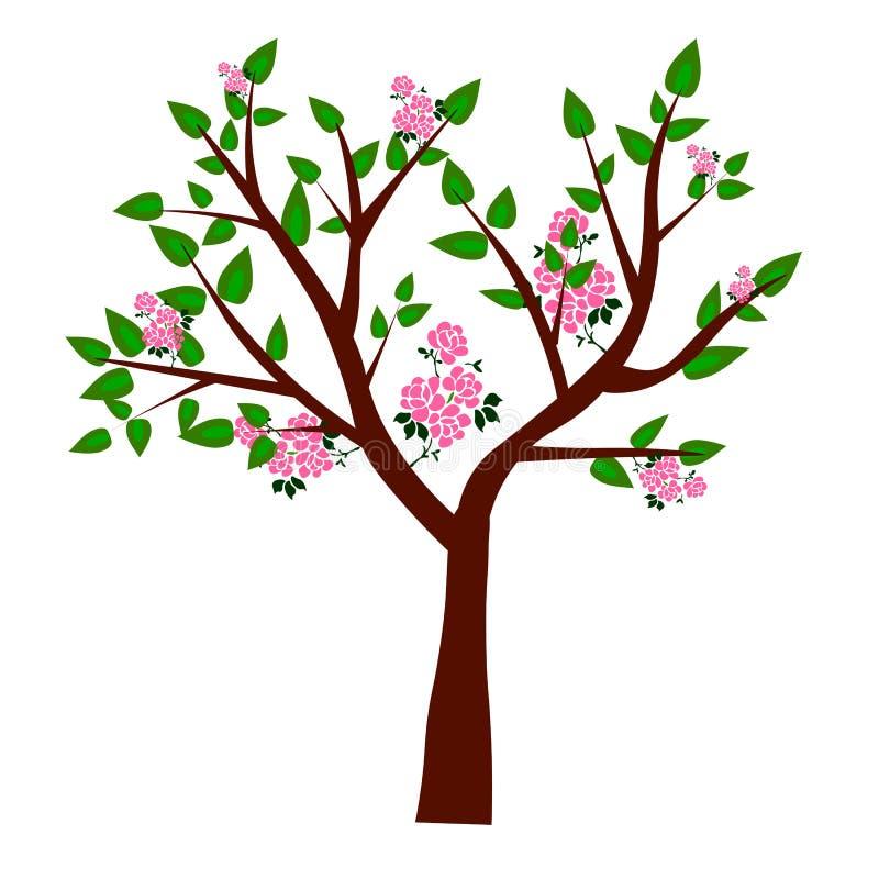 web Baum- und Wurzelvektor, Baum mit runder Form vektor abbildung