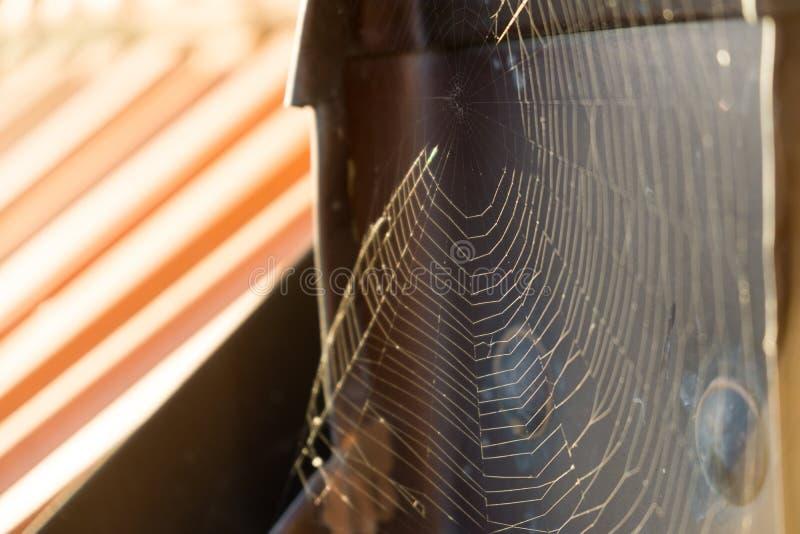 Web de araña en el tejado del edificio durante día soleado fotografía de archivo libre de regalías