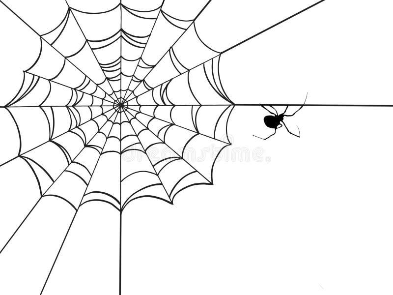 Web de aranha de canto ilustração royalty free