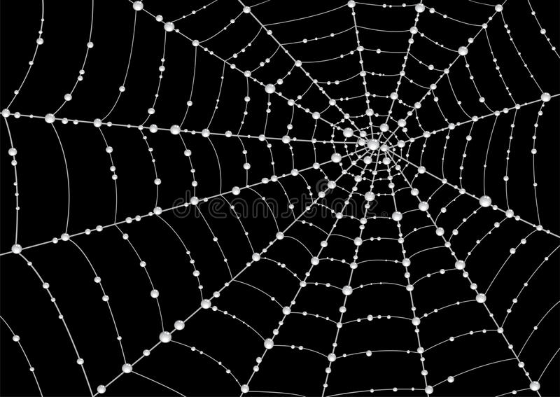 Spider Web with Dew Clip Art