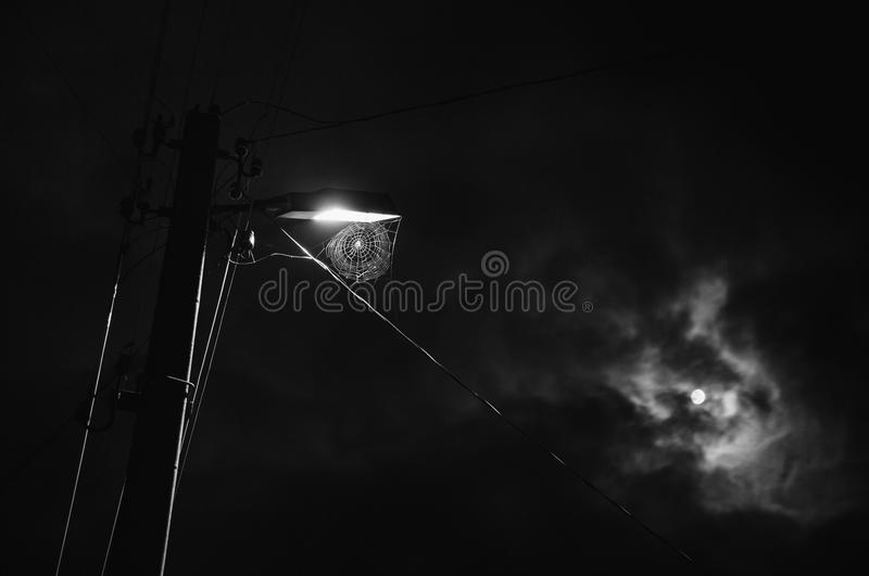 Black and white art monochrome photography. Web hanging on the lamp. The beautiful night scenery. Slow shutter speed. The spectacular night sky with the moon stock image