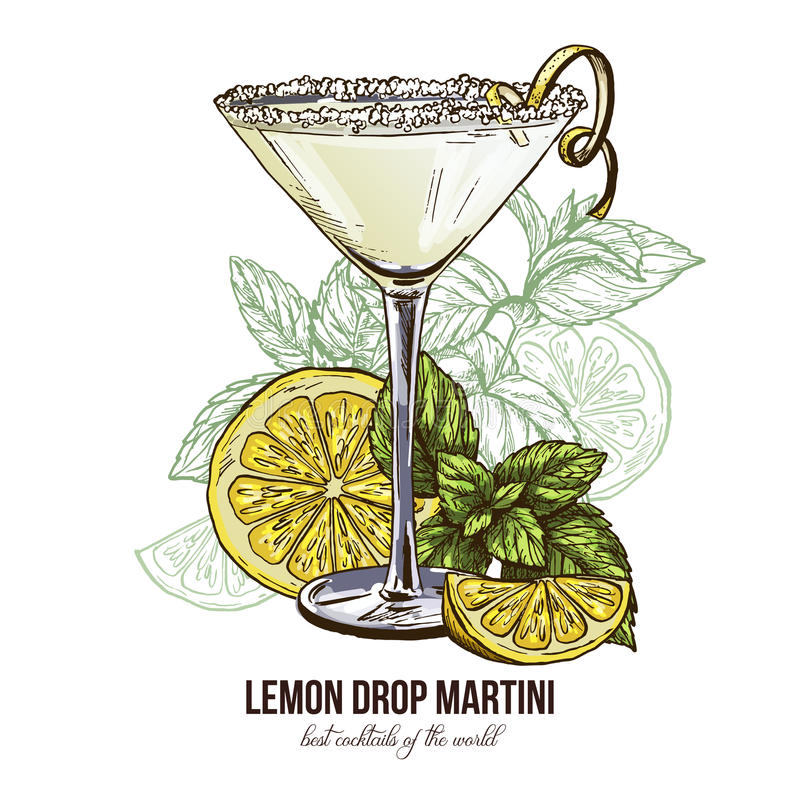 Web. Lemon Drop Martini with mint leaves, vector illustration, hand drawn colored sketch vector illustration