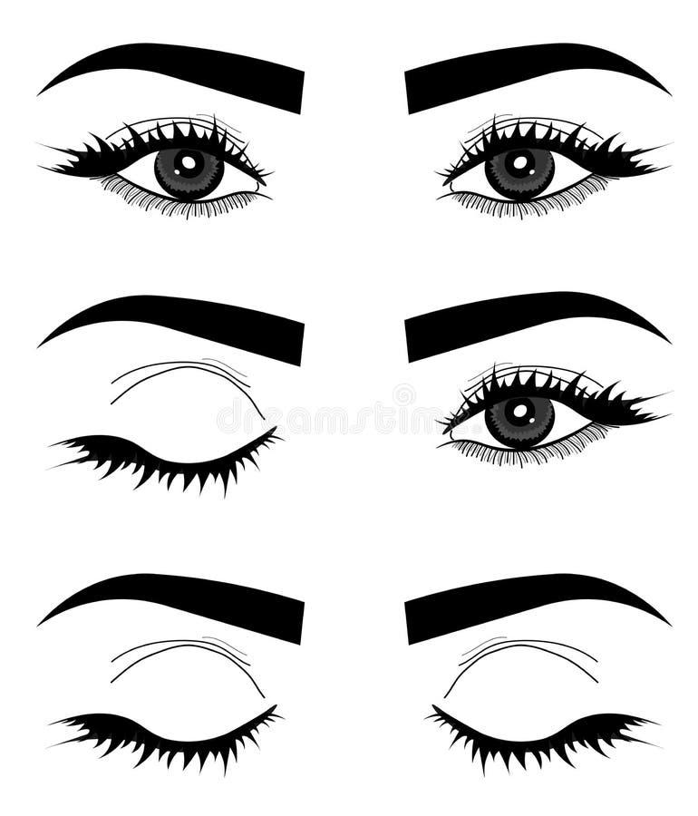 web Mikromischung Vektor von Augen, von Augenlidern und von Augenbrauen Logo des Gesichtes einer Frau vektor abbildung