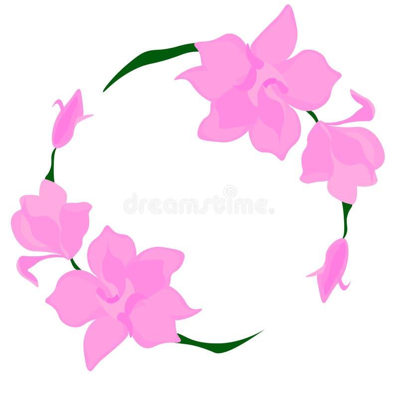 web Naturhintergrund mit Bl?tenniederlassung von rosa Blumen Vektor stock abbildung