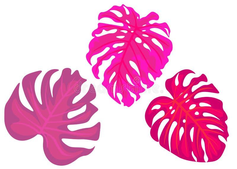 web palmettes ropical, feuilles de jungle, illustration botanique de vecteur, ensemble d'isolement sur le fond blanc illustration libre de droits